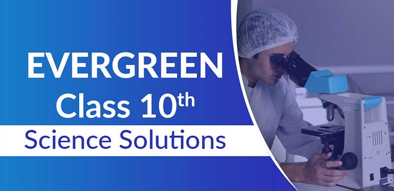 Evergreen Class 10 Science Solutions